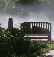 декоративное туманообразование