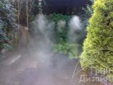 Система тумана Киев