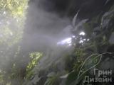 Декоративный туман Киев