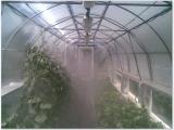 Туманные форсунки в теплице